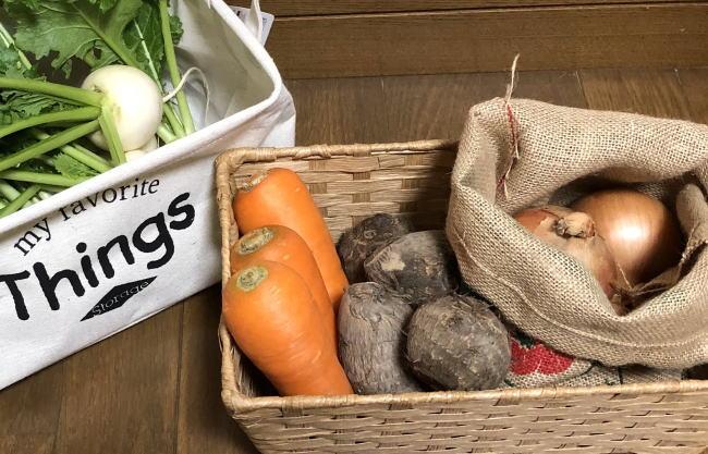 根菜の保存